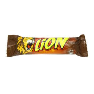 1212_lion